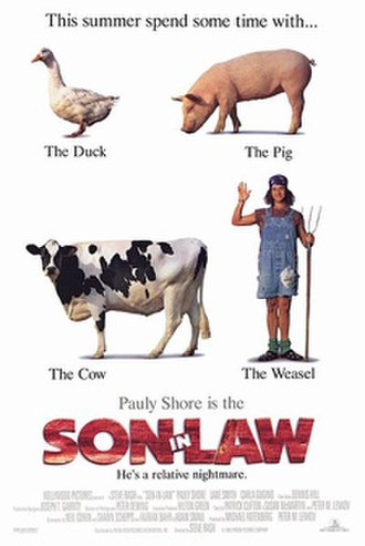 Son in Law - Theatrical release poster