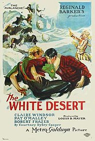 The White Desert FilmPoster.jpeg