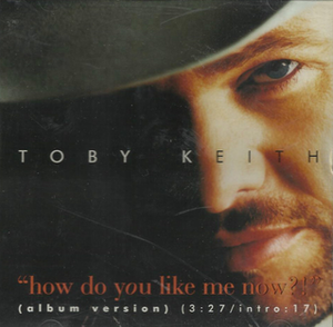 How Do You Like Me Now?! (song) - Image: Toby Keith Hdylmn