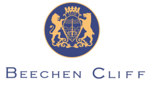 Beechen Cliff School - Image: Beechen cliff school logo