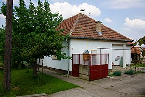 Klek, Zrenjanin - A house in Klek