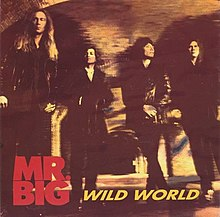 Mr. Big Wild World.jpg