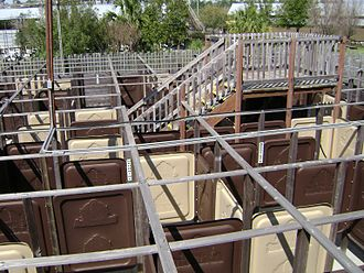 Maze - Public maze at Wild Adventures theme park, Valdosta, Georgia, United States. It was removed before the 2010 season.