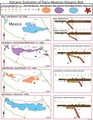 Volcanic Evolution of Trans-Mexican Volcanic Belt.pdf