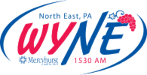 WZTE - Image: WYNE logo