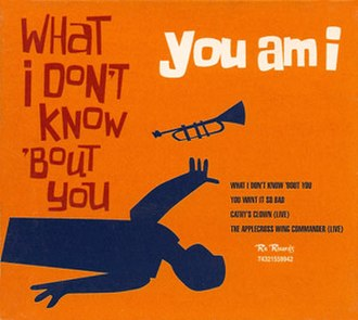 What I Don't Know 'bout You - Image: Widkay