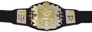 AWA World Heavyweight Championship - Image: AW Achampbelt