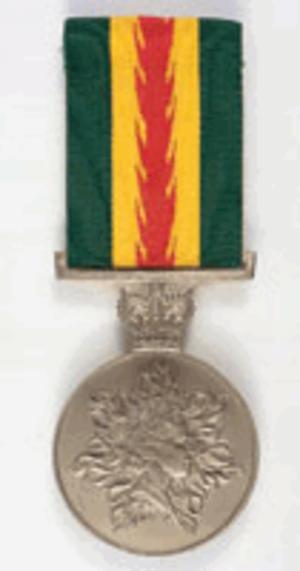 Australian Fire Service Medal - Image: Australian Fire Service Medal