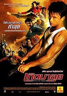 <i>Born to Fight</i> (2004 film)