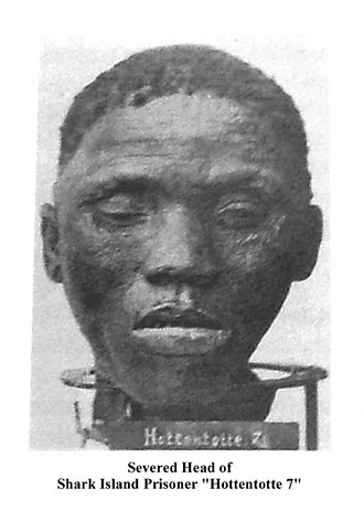 "Herero and Namaqua genocide - A black and white photo depicting the severed head of a Shark Island prisoner who is labeled as ""Hottentotte 7""."