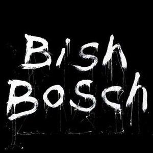 Bish Bosch - Image: Scott Walker Cover Bish Bosch