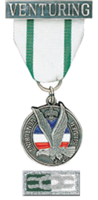 Silver Award (Boy Scouts of America).png