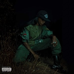 Back to the Woods (album) - Image: Angel Haze Back to the Woods