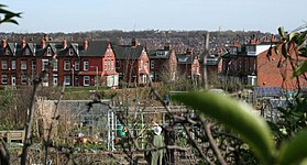 Burley-Leeds-UK view model allotments.jpg