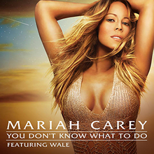 220px-Mariah_Carey_You_Don't_Know_What_t