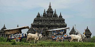 Bullock cart - Ox cart with bajingan at Prambanan Temple Festival