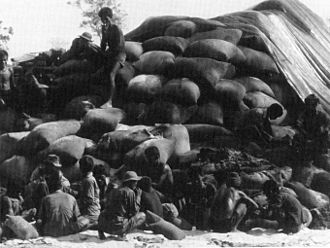 Cambodian Campaign - Cambodian civilians bag up captured North Vietnamese rice.