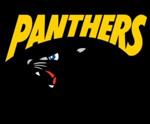 Panasonic Panthers - Image: Panasonicpanthers