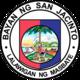 Official seal of San Jacinto