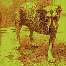 Alice in Chains albumjpg