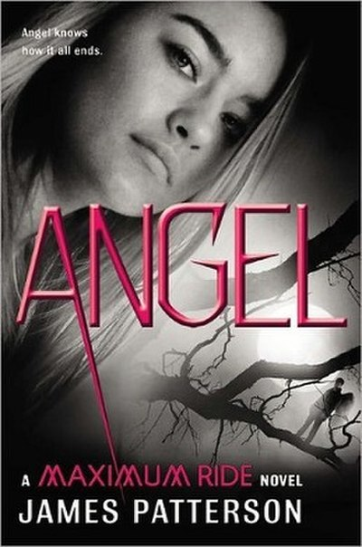 Picture of a book: Angel: A Maximum Ride Novel
