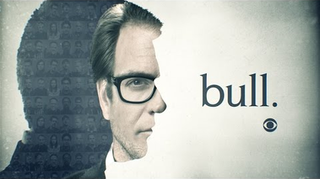 <i>Bull</i> (2016 TV series) American legal drama television series about a fictional trial consulting firm