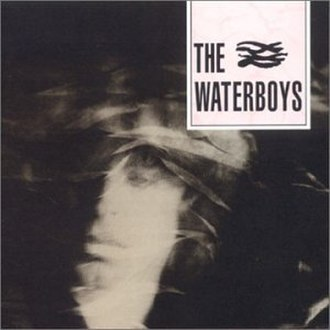 The Waterboys (album) - Image: The Waterboys Album cover