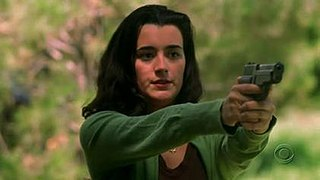 Ziva David fictional character