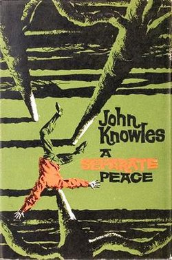 a separate peace and the madness A separate peace is a coming-of-age novel by john knowles based on his earlier short story, phineas, it was knowles' first published novel and became his best .