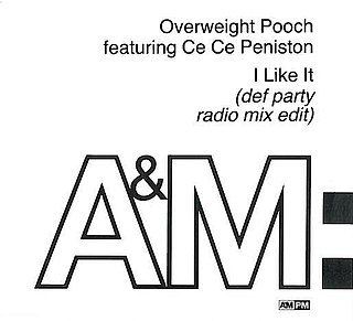 I Like It (Overweight Pooch song) 1991 song by Overweight Pooch