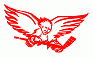 Carolina Thunderbirds - Image: Carolina Thunderbirds