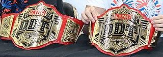 KO-D Tag Team Championship Professional wrestling tag team championship