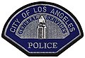 LA General Services Police Patch.jpg