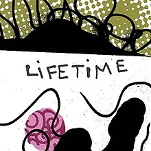 Lifetime cover.jpg