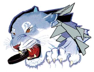 Norfolk IceCats - Norfolk Ice Cats