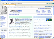 Netscape Browser 8.1.3