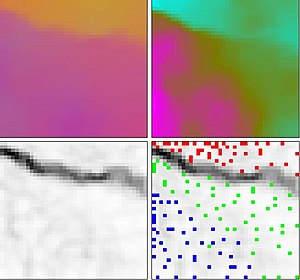 Self-organizing map - Self organizing map (SOM) of Fisher's Iris Flower Data Set with U-Matrix.  Top left: a color image formed by the first three dimensions of the four-dimensional SOM weight vectors.  Top Right: a pseudo-color image of the magnitude of the SOM weight vectors.  Bottom Left: a U-Matrix (Euclidean distance between weight vectors of neighboring cells) of the SOM.  Bottom Right: An overlay of data points (red: I. setosa, green: I. versicolor and blue: I. virginica) on the U-Matrix based on the minimum Euclidean distance between data vectors and SOM weight vectors.