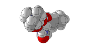 Sphingomyelin - Top-down view of sphingomyelin, demonstrating its nearly cylindrical shape