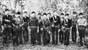 Viet Cong soldiers from D445 Bn (AWM P01934033).png