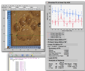 JMP (statistical software) - JMP being used in the WildTrack FIT system