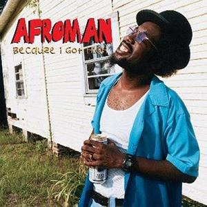 Because I Got High - Image: Afroman Because I Got High single