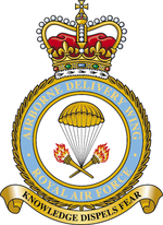 Airborne Delivery Wing badge