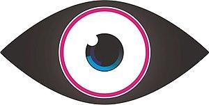 Celebrity Big Brother 9 (UK) - Image: Big Brother First C5 Eye