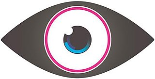 <i>Celebrity Big Brother</i> (UK series 9) season of television series