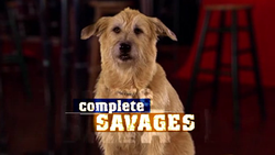 Complete Savages 2004 Intertitle.png