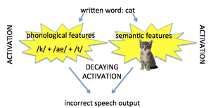 Deep dyslexia - Deep dyslexics have sufficient activation of a written word's features; but, this activation decays quickly, leading to errors in speech output.