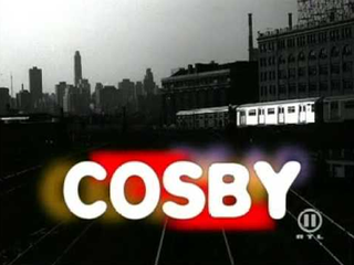 <i>Cosby</i> (TV series) CBS sitcom