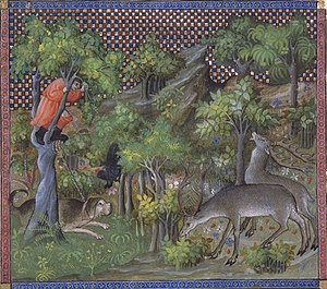 Limer - Finding the Hart from the famous medieval manuscript Livre de la Chasse by Gaston Phoebus, Count de Foix. The handler has tied his heavily built limer to a tree, which he has climbed to spot the deer.