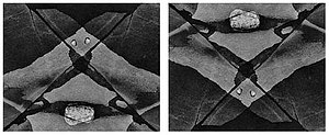 Minor White - Two iterations of Power Spot (1970). White flipped the negative vertically between the first and the second version.