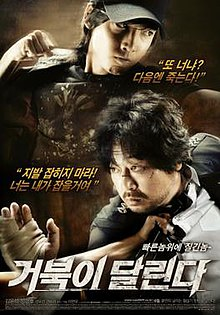 Running Turtle film poster.jpg